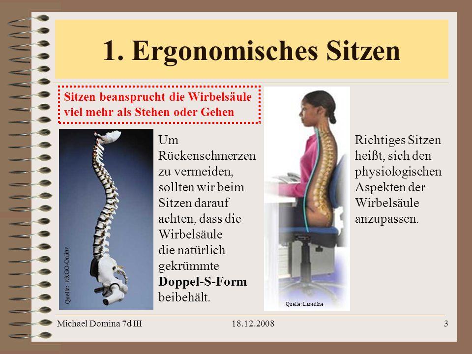 Michael Domina 7d III18.12.20083 1. Ergonomisches Sitzen Sitzen beansprucht die Wirbelsäule viel mehr als Stehen oder Gehen Um Rückenschmerzen zu verm