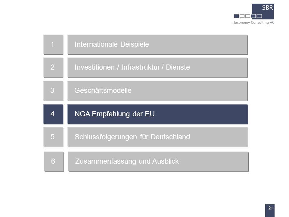 21 Internationale Beispiele1 Investitionen / Infrastruktur / Dienste2 Geschäftsmodelle3 NGA Empfehlung der EU4 Schlussfolgerungen für Deutschland5 Zus