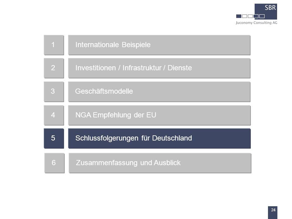 24 Internationale Beispiele1 Investitionen / Infrastruktur / Dienste2 Geschäftsmodelle3 NGA Empfehlung der EU4 Schlussfolgerungen für Deutschland5 Zus