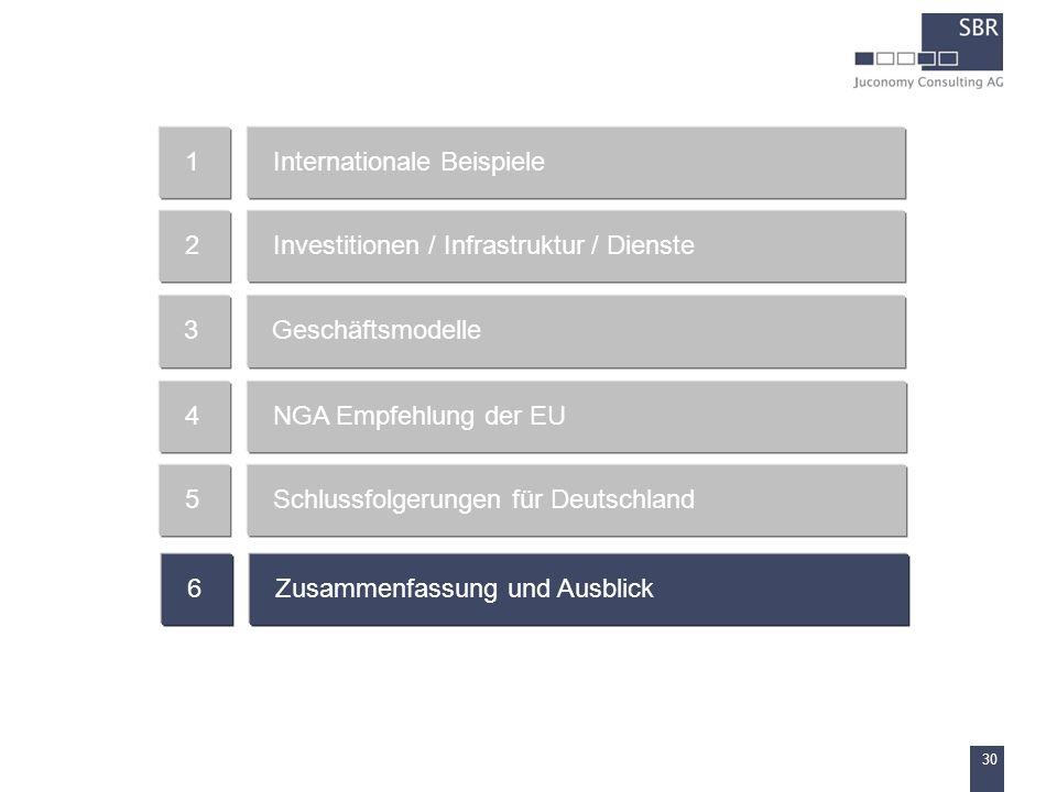 30 Internationale Beispiele1 Investitionen / Infrastruktur / Dienste2 Geschäftsmodelle3 NGA Empfehlung der EU4 Schlussfolgerungen für Deutschland5 Zus