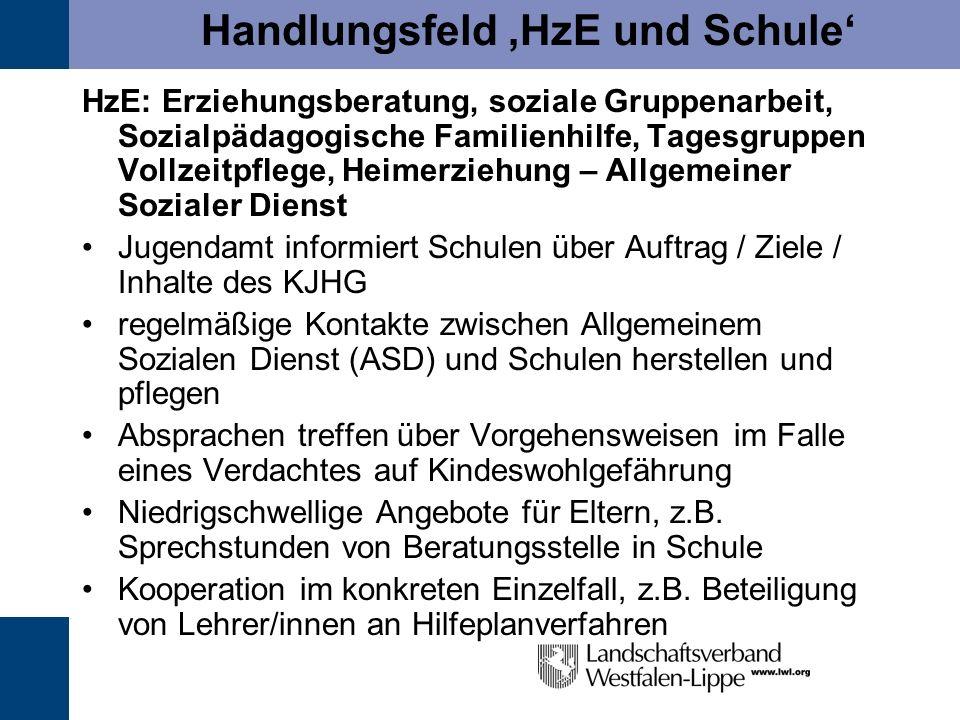 Handlungsfeld HzE und Schule HzE: Erziehungsberatung, soziale Gruppenarbeit, Sozialpädagogische Familienhilfe, Tagesgruppen Vollzeitpflege, Heimerzieh