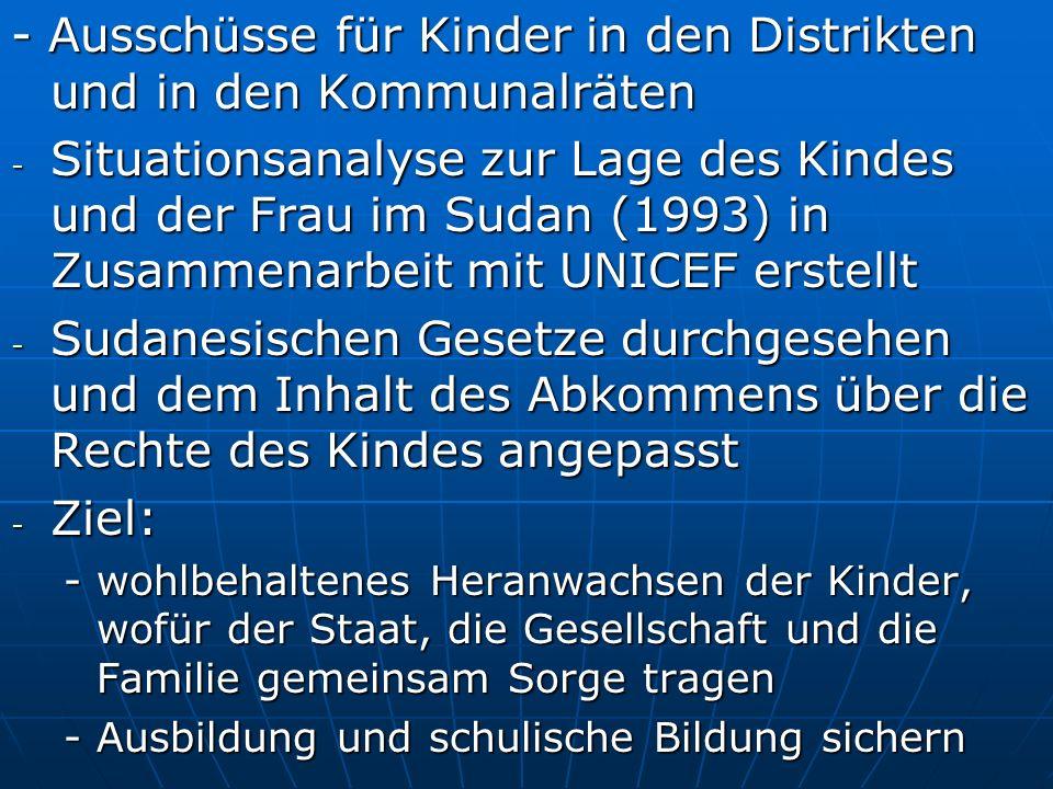 - Ausschüsse für Kinder in den Distrikten und in den Kommunalräten - Situationsanalyse zur Lage des Kindes und der Frau im Sudan (1993) in Zusammenarb