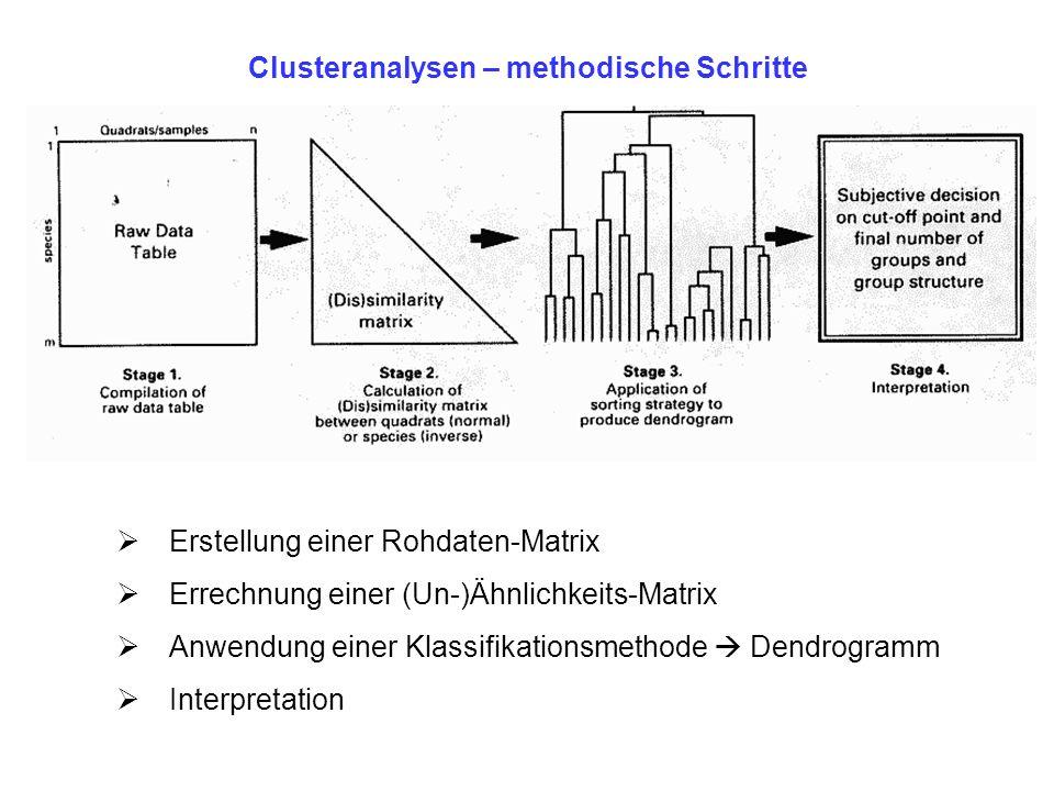 Clusteranalysen – methodische Schritte Erstellung einer Rohdaten-Matrix Errechnung einer (Un-)Ähnlichkeits-Matrix Anwendung einer Klassifikationsmetho