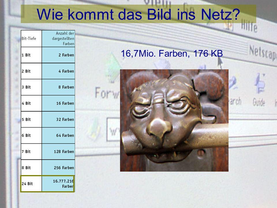 Wie kommt das Bild ins Netz? 256 Farben, 66,3 KB