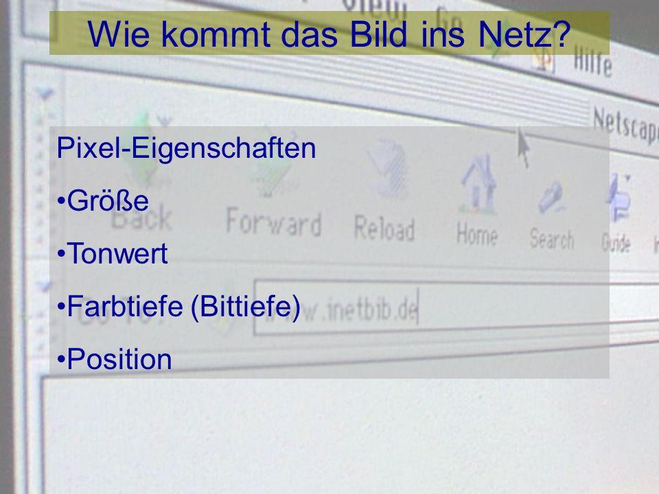Zur Praxis des wissenschaftlichen Publizierens Martin Liebetruth Göttinger DigitalisierungsZentrum (GDZ) SUB Göttingen www.sub.uni-goettingen.de/gdz