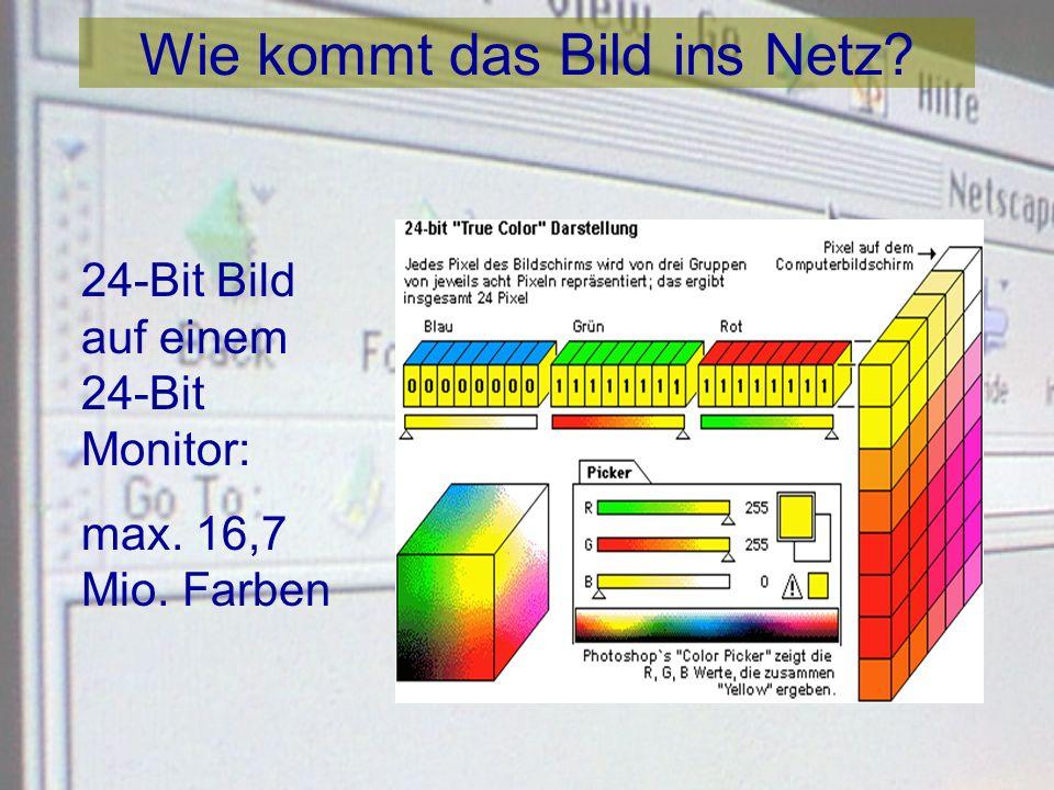 Wie kommt das Bild ins Netz? 8-Bit Bild auf einem 8-Bit Monitor: max. 256 Farben