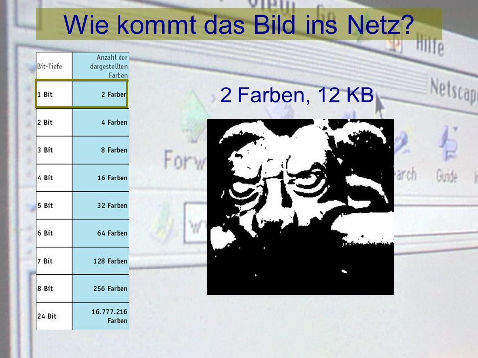 Wie kommt das Bild ins Netz? 24-Bit Bild auf einem 24-Bit Monitor: max. 16,7 Mio. Farben