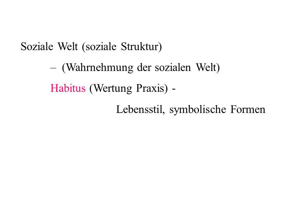Soziale Welt (soziale Struktur) – (Wahrnehmung der sozialen Welt) Habitus (Wertung Praxis) - Lebensstil, symbolische Formen