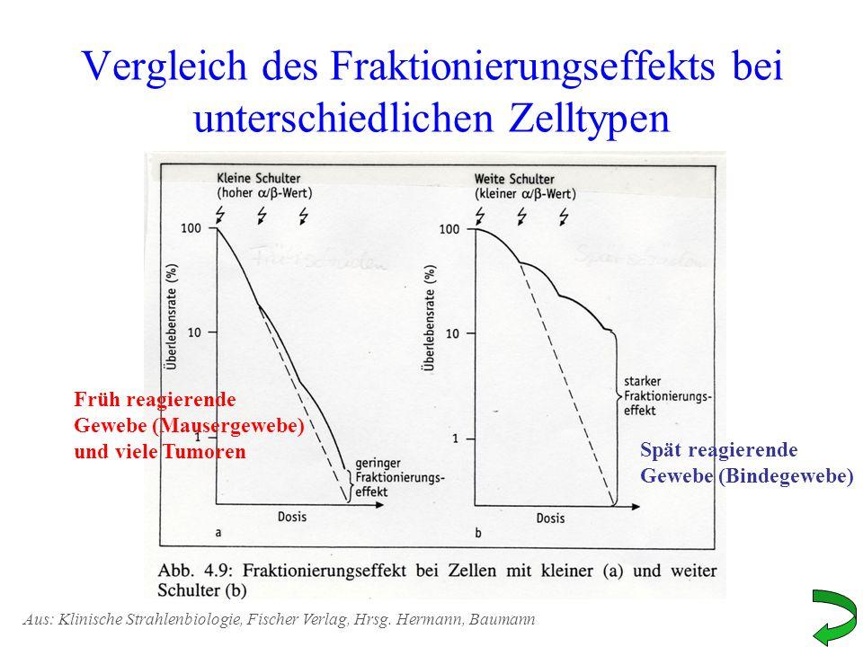 Vergleich des Fraktionierungseffekts bei unterschiedlichen Zelltypen Früh reagierende Gewebe (Mausergewebe) und viele Tumoren Spät reagierende Gewebe