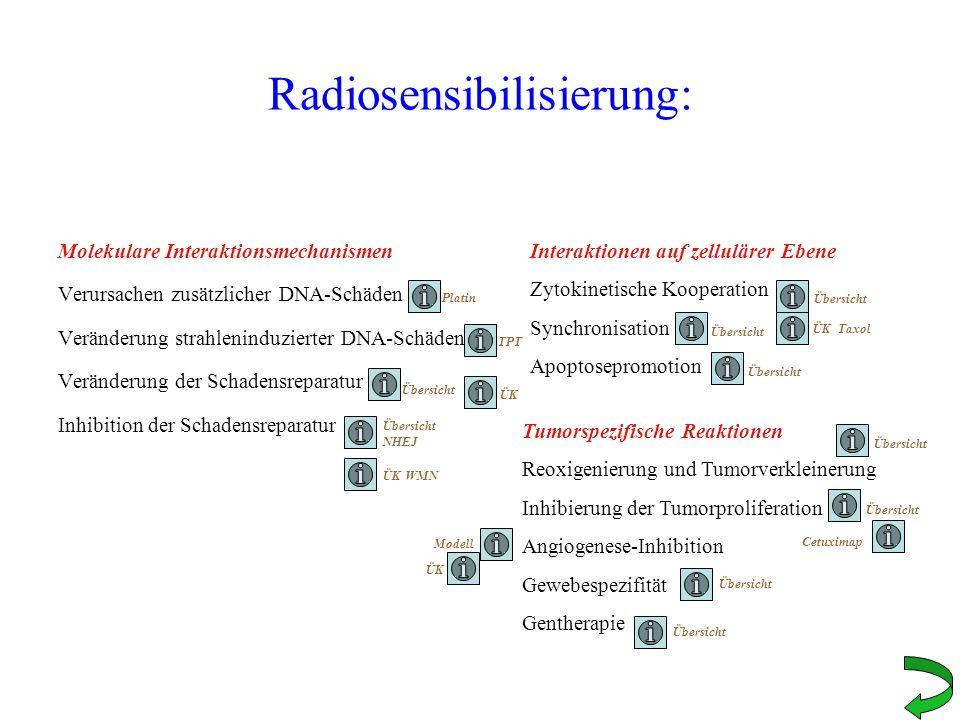 Radiosensibilisierung: Molekulare Interaktionsmechanismen Verursachen zusätzlicher DNA-Schäden Veränderung strahleninduzierter DNA-Schäden Veränderung