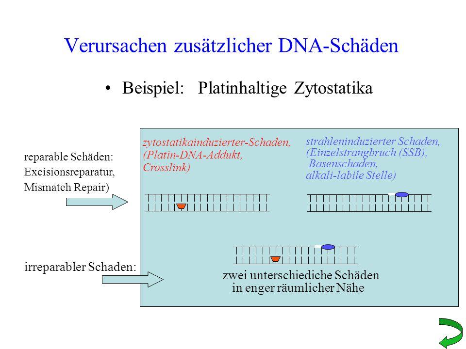 Verursachen zusätzlicher DNA-Schäden Beispiel:Platinhaltige Zytostatika zytostatikainduzierter-Schaden, (Platin-DNA-Addukt, Crosslink) strahleninduzie