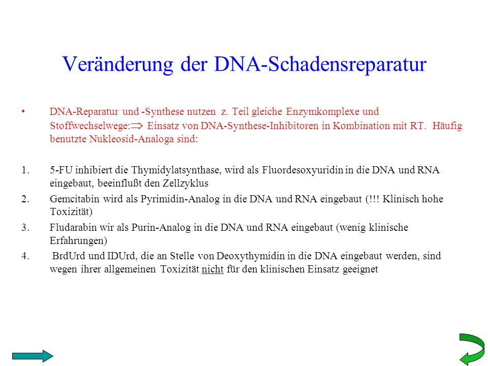 Veränderung der DNA-Schadensreparatur DNA-Reparatur und -Synthese nutzen z. Teil gleiche Enzymkomplexe und Stoffwechselwege: Einsatz von DNA-Synthese-