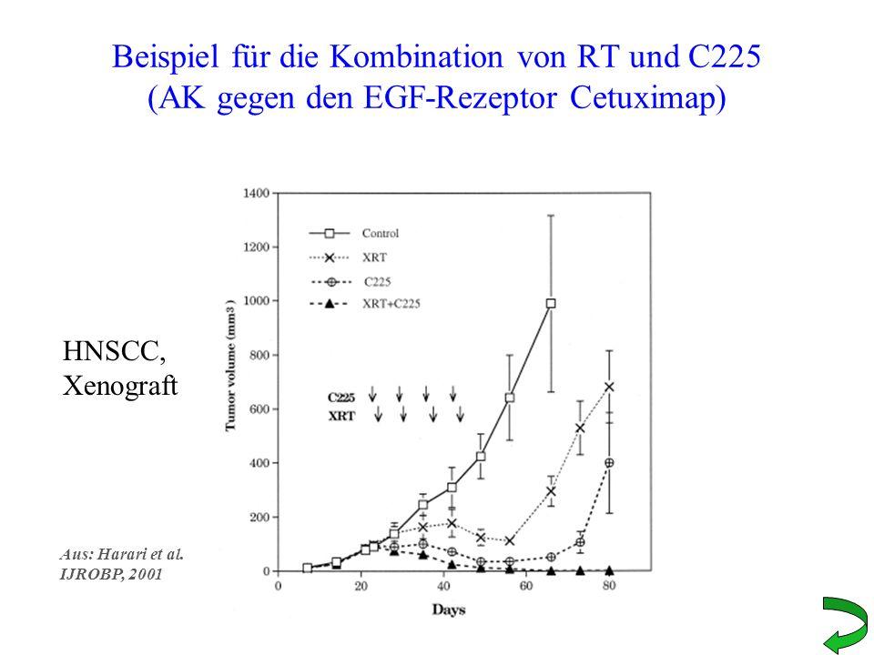 Beispiel für die Kombination von RT und C225 (AK gegen den EGF-Rezeptor Cetuximap) HNSCC, Xenograft Aus: Harari et al. IJROBP, 2001
