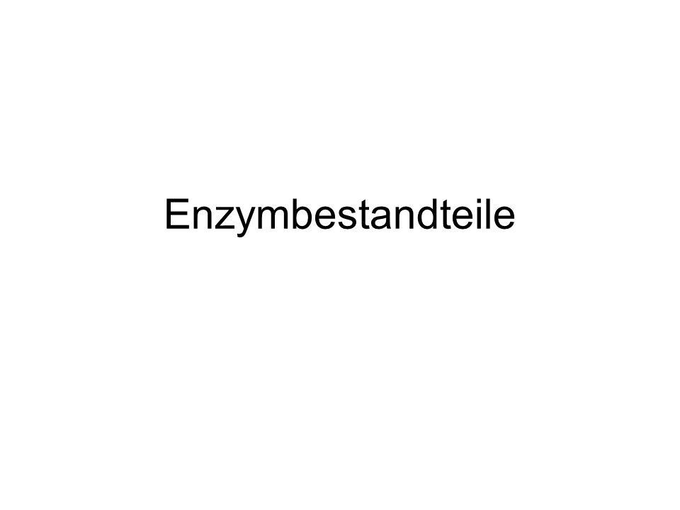 Struktur von Enzymen Die Primärstruktur: Die Aneinanderreihung von Aminosäuren …Phe-Ala-Tyr-Ala-Gly-Phe-Tyr…