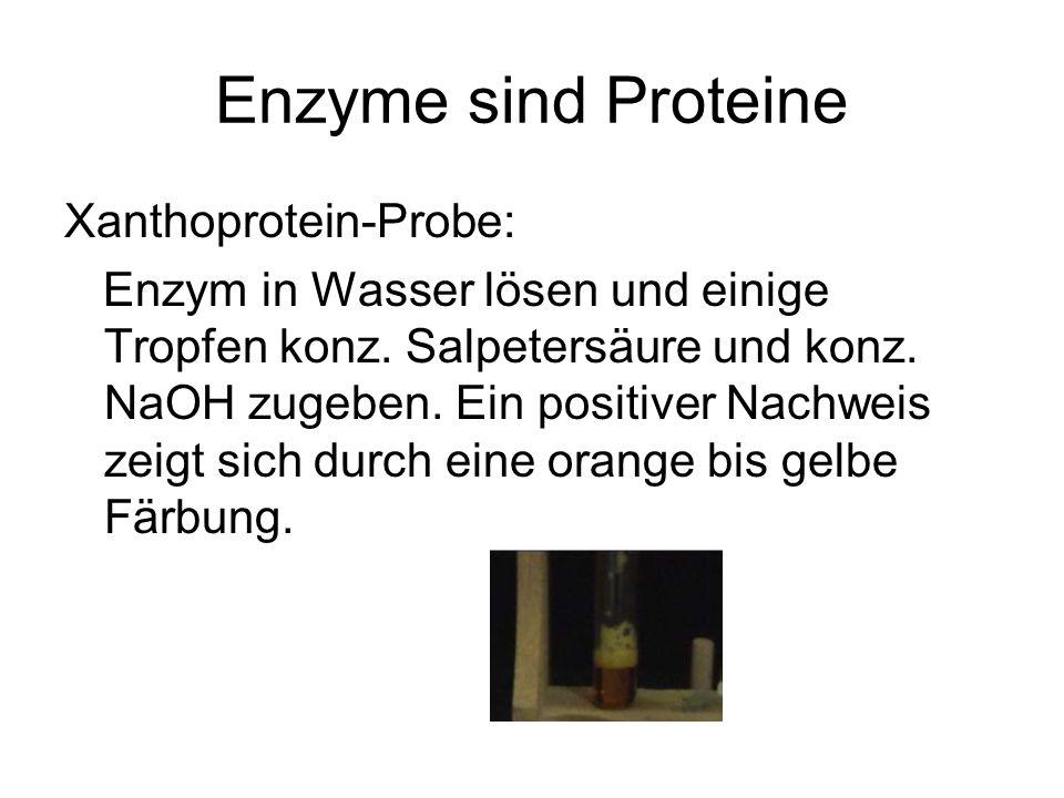 Enzyme sind Proteine Xanthoprotein-Probe: Enzym in Wasser lösen und einige Tropfen konz. Salpetersäure und konz. NaOH zugeben. Ein positiver Nachweis