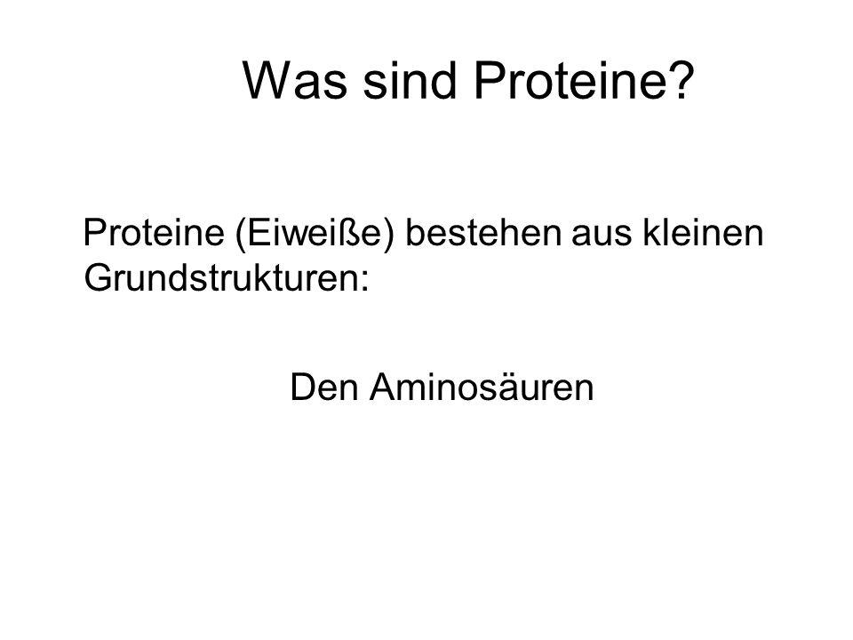 Was sind Proteine? Proteine (Eiweiße) bestehen aus kleinen Grundstrukturen: Den Aminosäuren