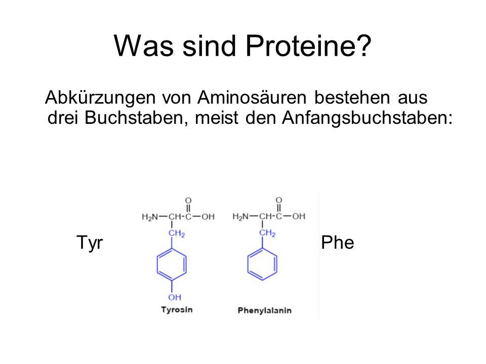 Was sind Proteine? Abkürzungen von Aminosäuren bestehen aus drei Buchstaben, meist den Anfangsbuchstaben: Tyr Phe
