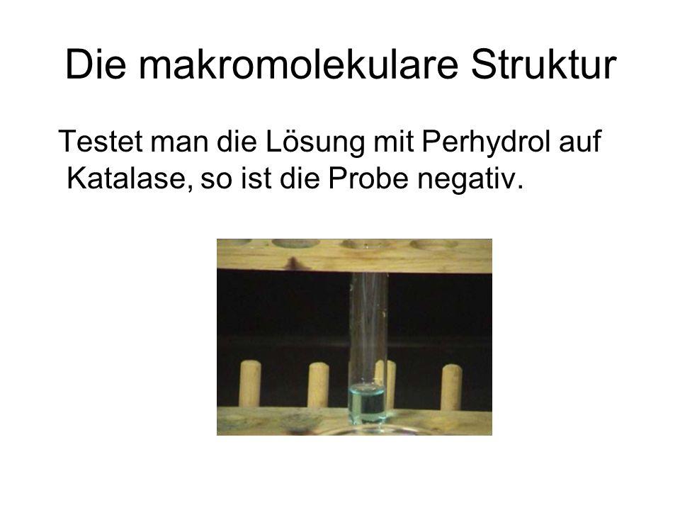 Die makromolekulare Struktur Testet man die Lösung mit Perhydrol auf Katalase, so ist die Probe negativ.