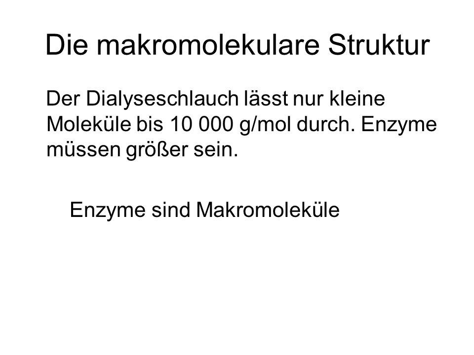 Die makromolekulare Struktur Der Dialyseschlauch lässt nur kleine Moleküle bis 10 000 g/mol durch. Enzyme müssen größer sein. Enzyme sind Makromolekül