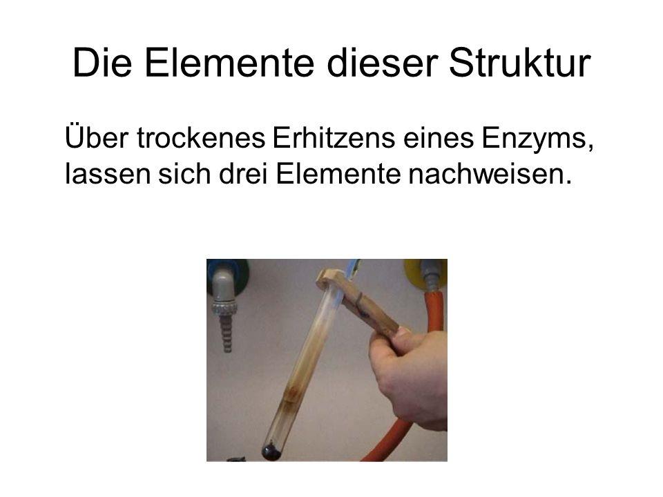 Die Elemente dieser Struktur Über trockenes Erhitzens eines Enzyms, lassen sich drei Elemente nachweisen.