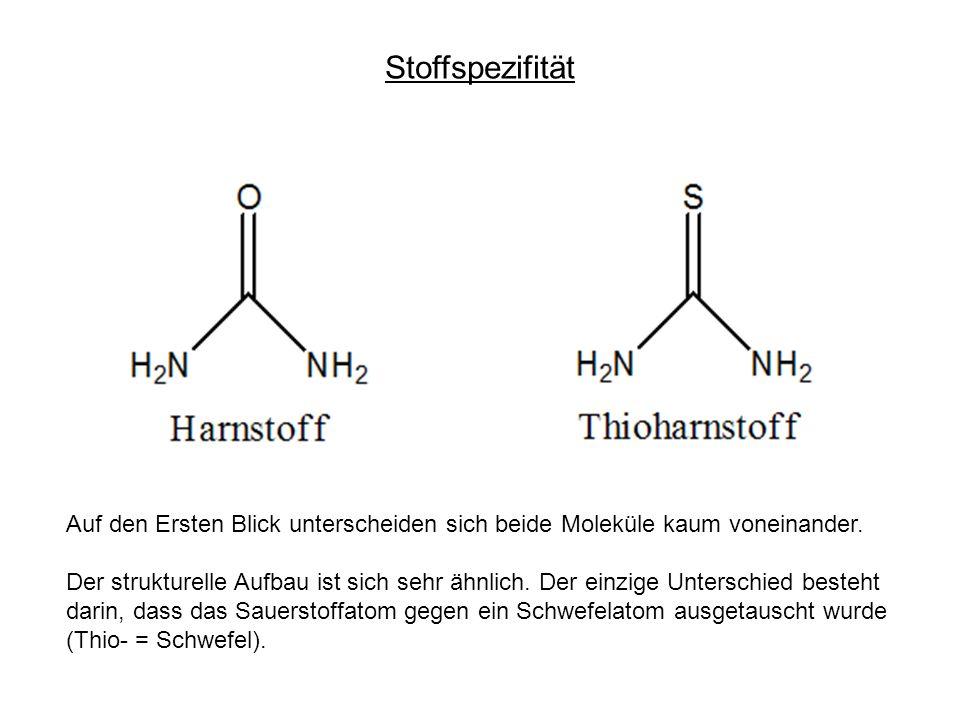 Stoffspezifität Auf den Ersten Blick unterscheiden sich beide Moleküle kaum voneinander. Der strukturelle Aufbau ist sich sehr ähnlich. Der einzige Un