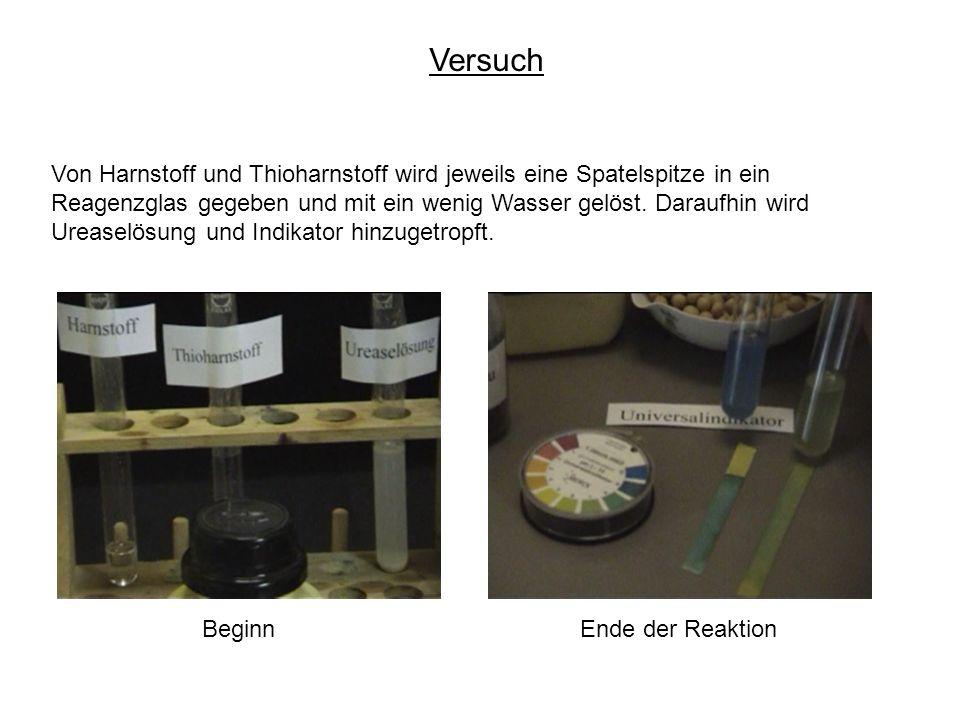 Versuch Von Harnstoff und Thioharnstoff wird jeweils eine Spatelspitze in ein Reagenzglas gegeben und mit ein wenig Wasser gelöst.