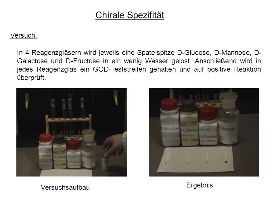 Chirale Spezifität Versuch: In 4 Reagenzgläsern wird jeweils eine Spatelspitze D-Glucose, D-Mannose, D- Galactose und D-Fructose in ein wenig Wasser gelöst.