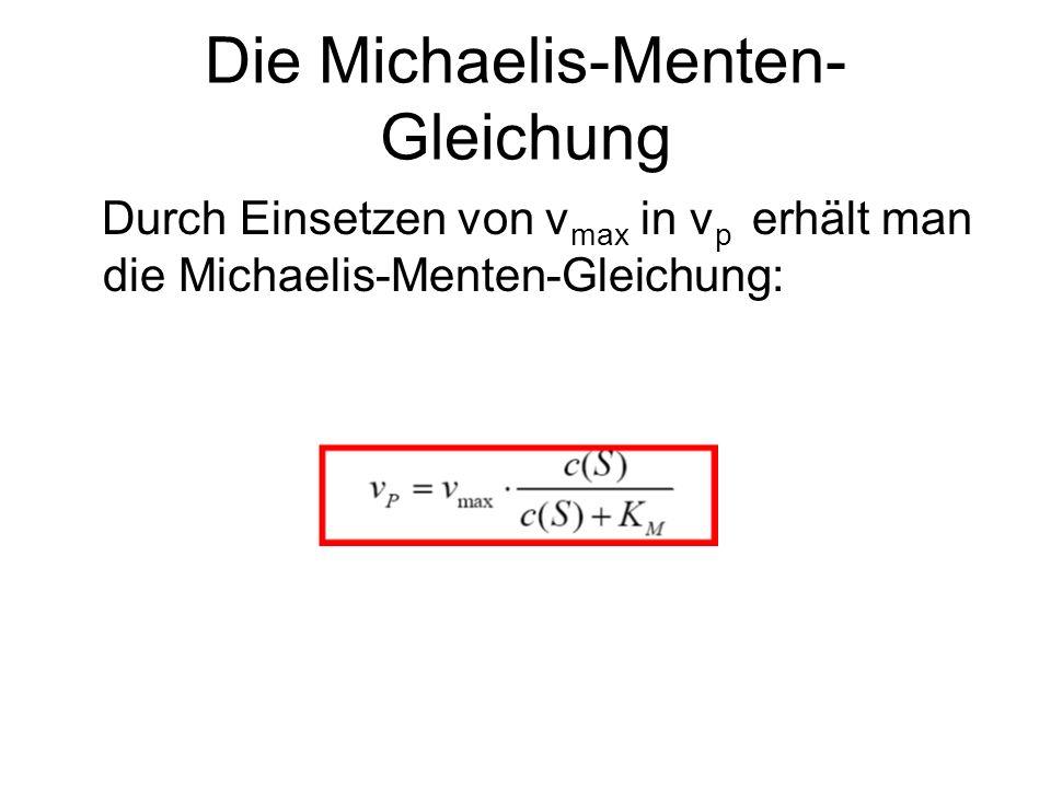 Die Michaelis-Menten- Gleichung Durch Einsetzen von v max in v p erhält man die Michaelis-Menten-Gleichung: