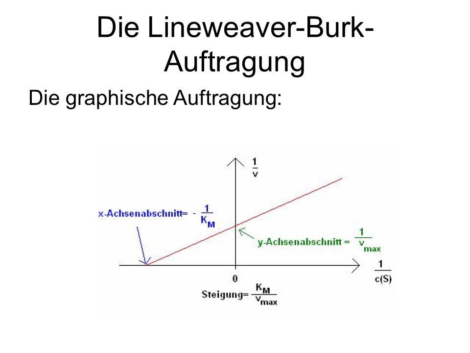 Die Lineweaver-Burk- Auftragung Die graphische Auftragung: