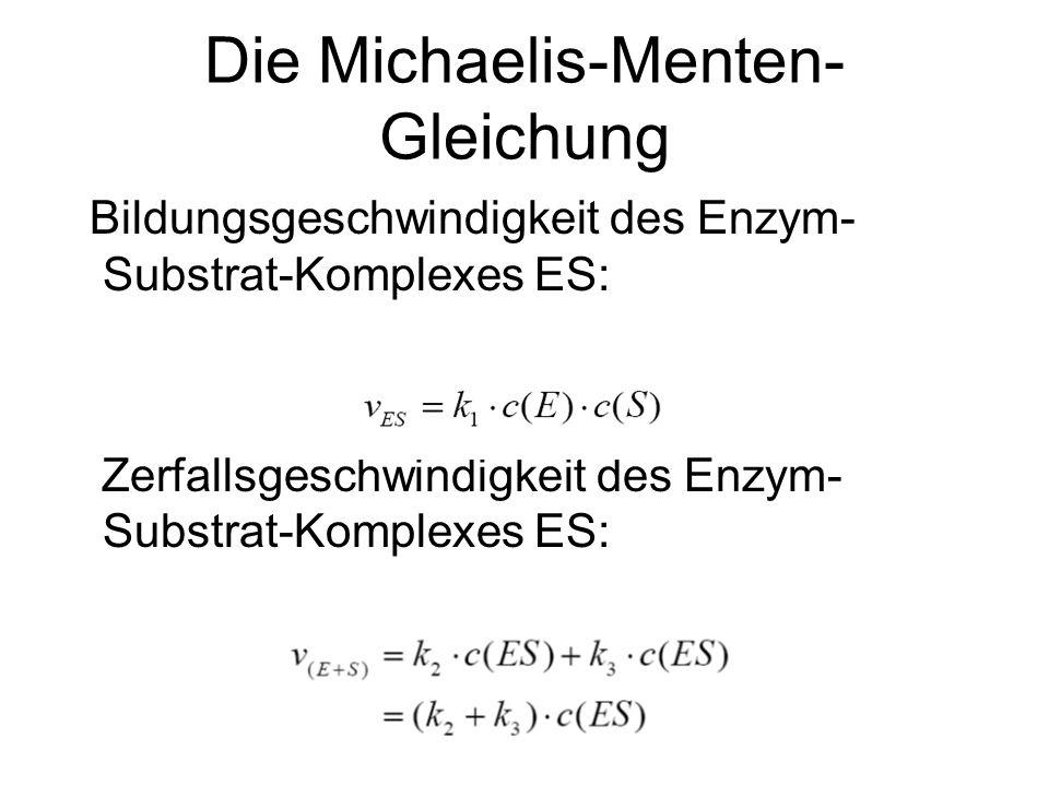 Die Michaelis-Menten- Gleichung Bildungsgeschwindigkeit des Enzym- Substrat-Komplexes ES: Zerfallsgeschwindigkeit des Enzym- Substrat-Komplexes ES: