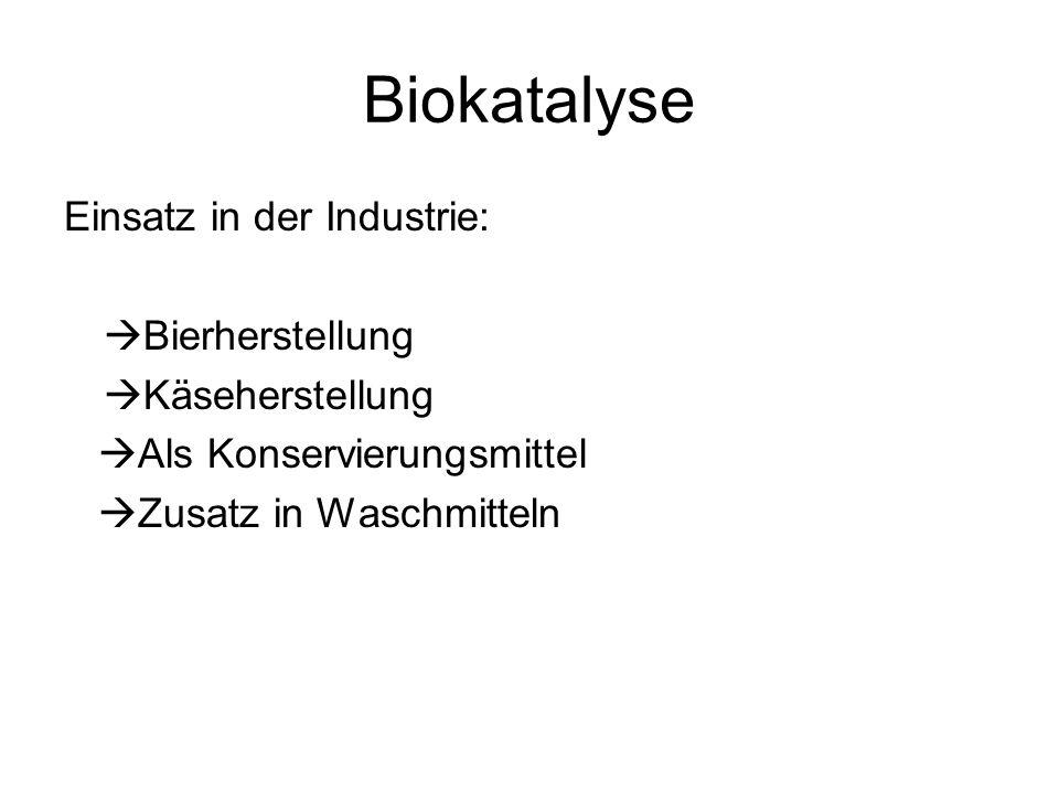 Biokatalyse Einsatz in der Industrie: Bierherstellung Käseherstellung Als Konservierungsmittel Zusatz in Waschmitteln