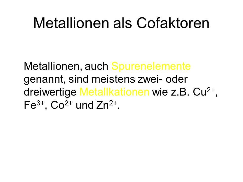 Metallionen als Cofaktoren Metallionen, auch Spurenelemente genannt, sind meistens zwei- oder dreiwertige Metallkationen wie z.B. Cu 2+, Fe 3+, Co 2+