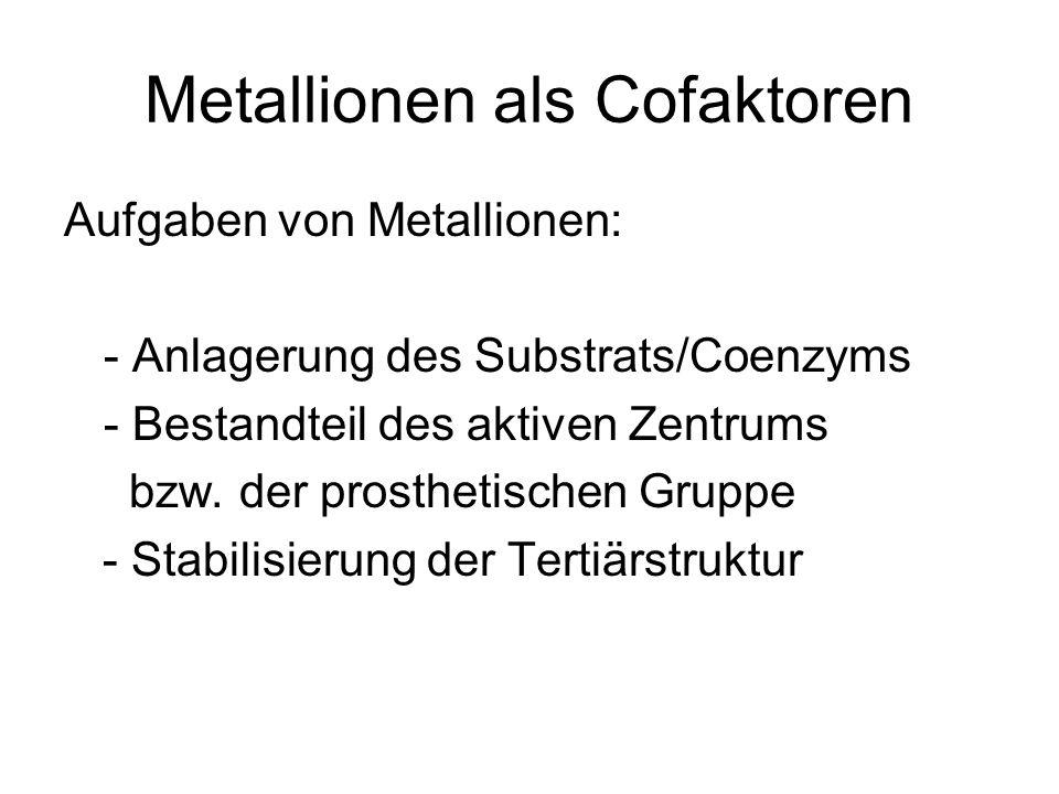 Metallionen als Cofaktoren Aufgaben von Metallionen: - Anlagerung des Substrats/Coenzyms - Bestandteil des aktiven Zentrums bzw. der prosthetischen Gr