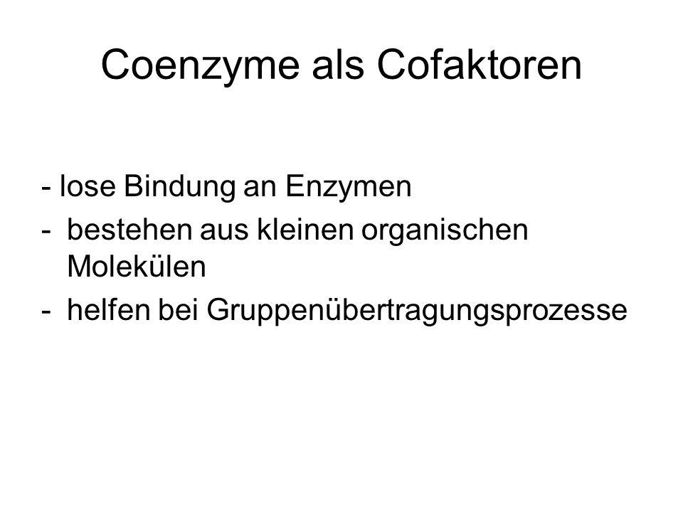 Coenzyme als Cofaktoren - lose Bindung an Enzymen -bestehen aus kleinen organischen Molekülen -helfen bei Gruppenübertragungsprozesse