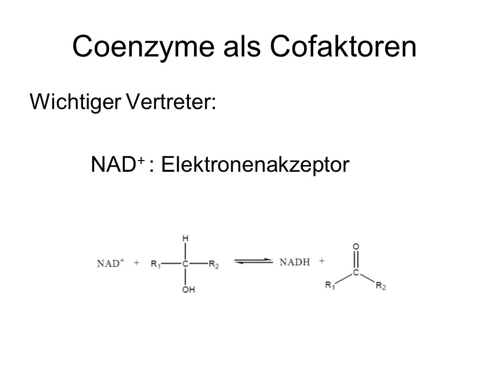 Coenzyme als Cofaktoren Wichtiger Vertreter: NAD + : Elektronenakzeptor