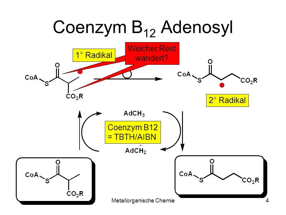Metallorganische Chemie4 Coenzym B 12 Adenosyl 1° Radikal Coenzym B12 = TBTH/AIBN 2° Radikal Welcher Rest wandert?