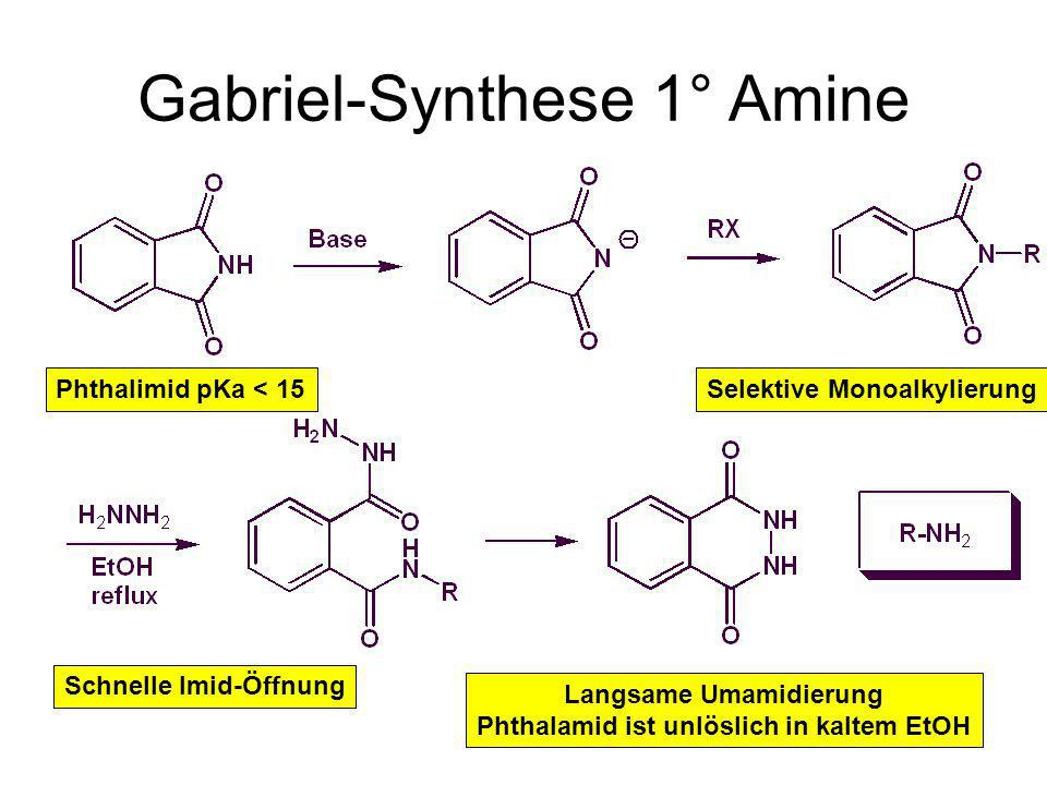 Gabriel-Synthese 1° Amine Phthalimid pKa < 15Selektive Monoalkylierung Schnelle Imid-Öffnung Langsame Umamidierung Phthalamid ist unlöslich in kaltem