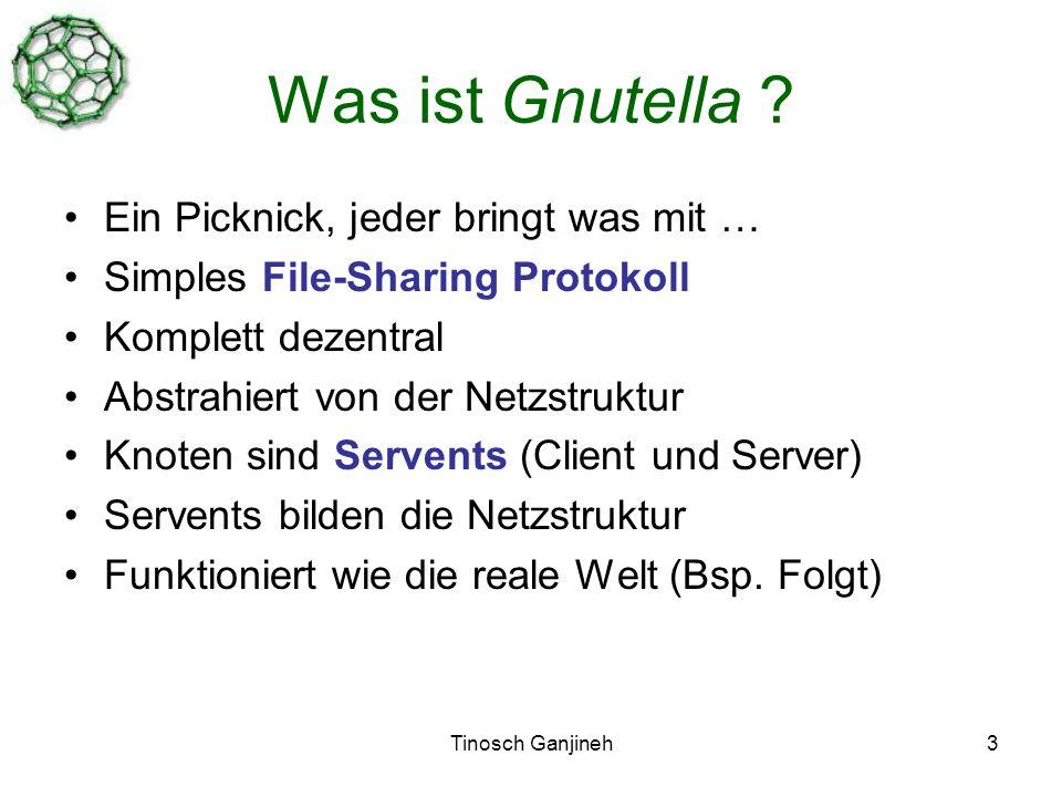 Tinosch Ganjineh3 Was ist Gnutella .