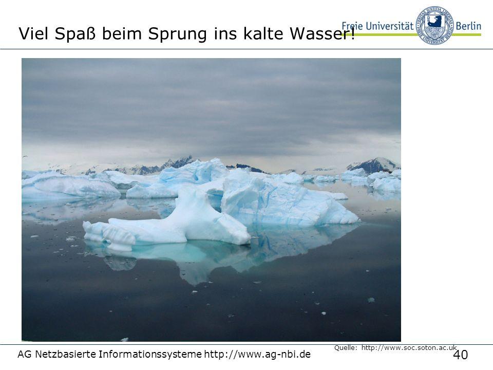40 AG Netzbasierte Informationssysteme http://www.ag-nbi.de Viel Spaß beim Sprung ins kalte Wasser! Quelle: http://www.soc.soton.ac.uk