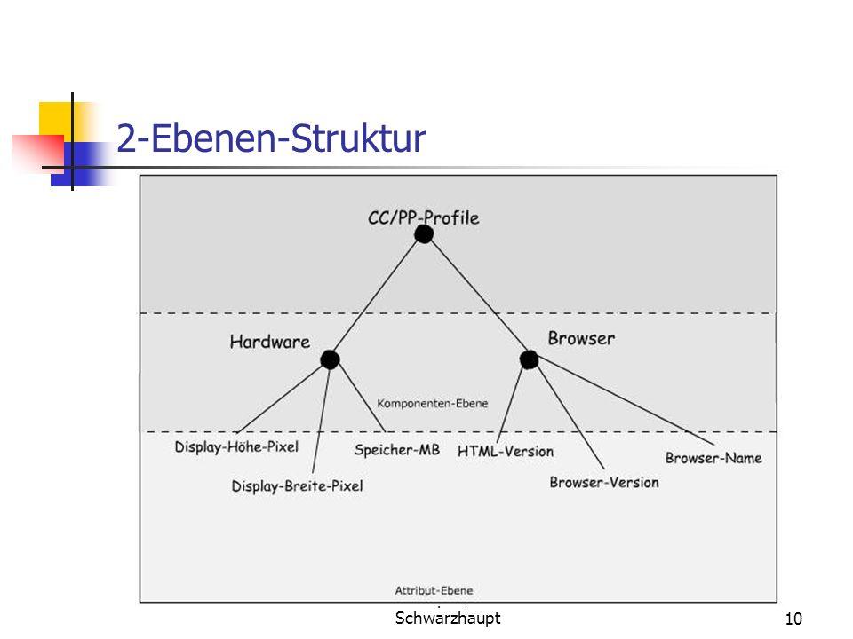 Jussi Visapää, Viktoria Schwarzhaupt10 2-Ebenen-Struktur