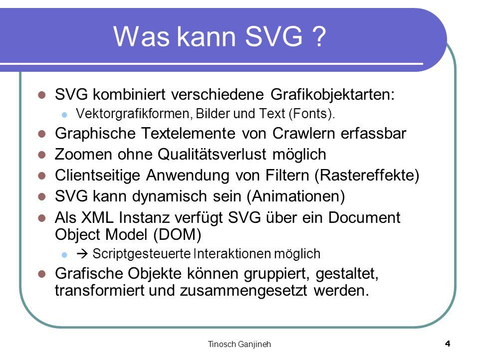 Tinosch Ganjineh4 Was kann SVG ? SVG kombiniert verschiedene Grafikobjektarten: Vektorgrafikformen, Bilder und Text (Fonts). Graphische Textelemente v