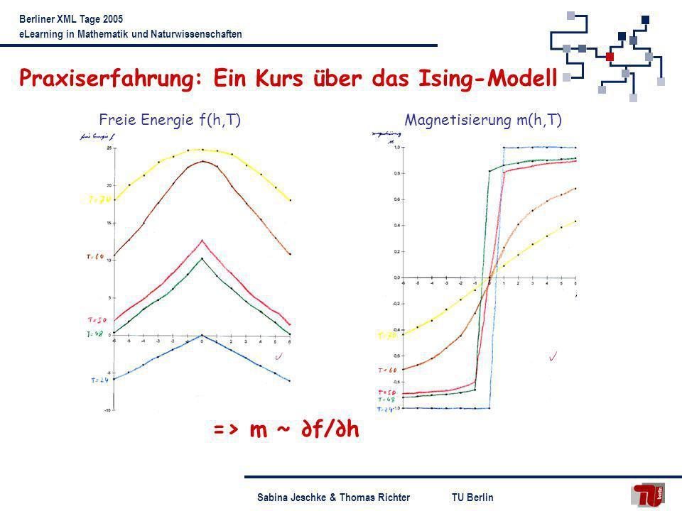TU BerlinSabina Jeschke & Thomas Richter Berliner XML Tage 2005 eLearning in Mathematik und Naturwissenschaften Praxiserfahrung: Ein Kurs über das Isi