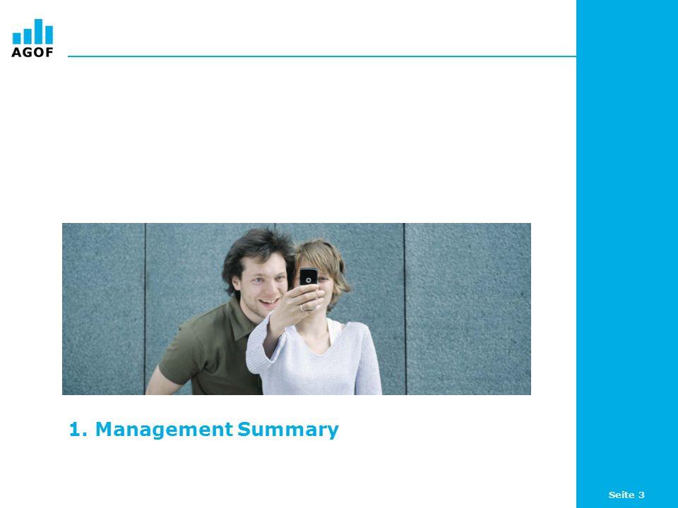 Seite 3 1. Management Summary