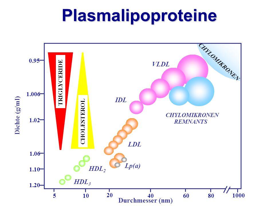 Dichte (g/ml) 1000 80 0.95 1.006 1.02 1.06 1.10 1.20 6040 20 105 CHOLESTEROL TRIGLYCERIDE LDL HDL 2 HDL 3 IDL VLDL CHYLOMIKRONEN REMNANTS CHYLOMIKRONE