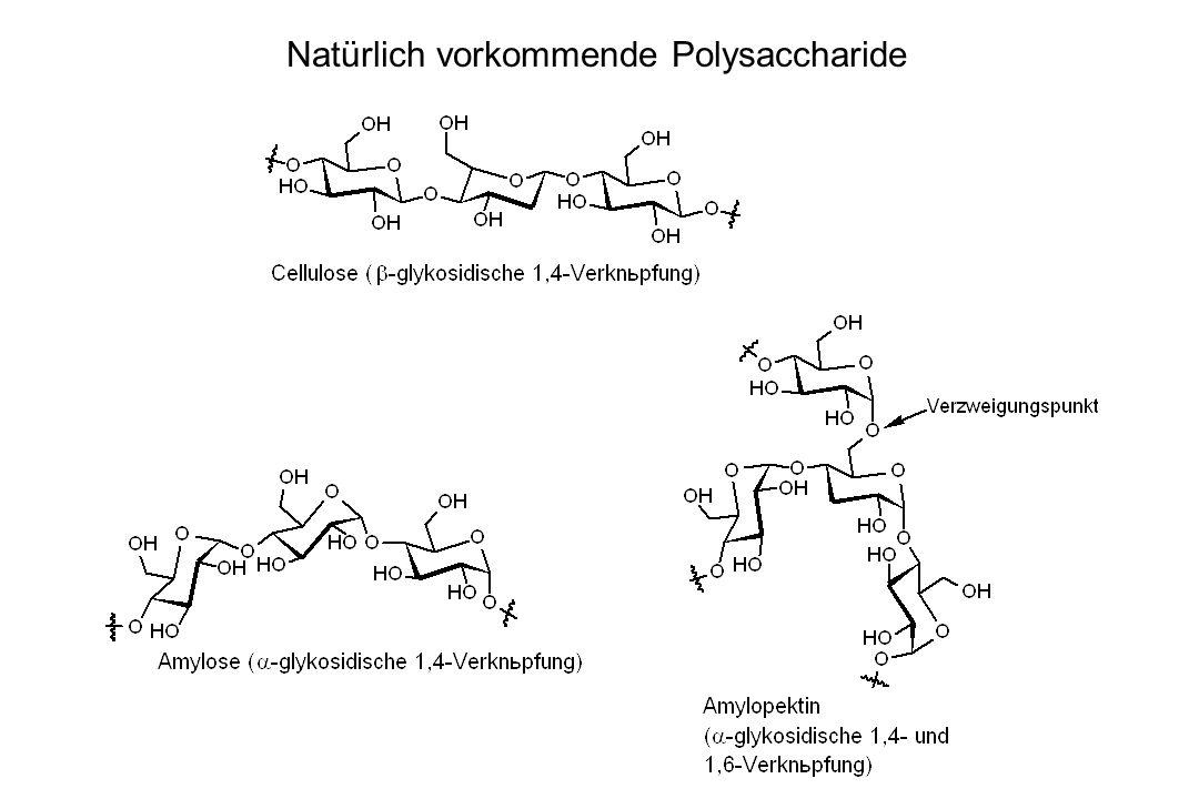 Natürlich vorkommende Polysaccharide