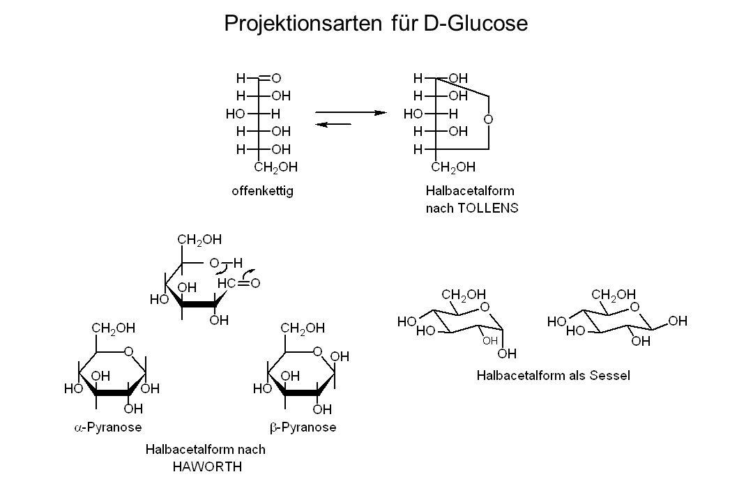 Projektionsarten für D-Glucose