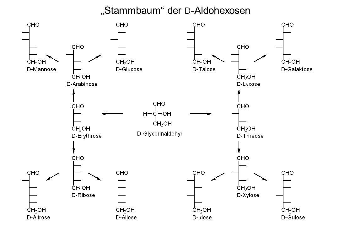 Stammbaum der D -Aldohexosen