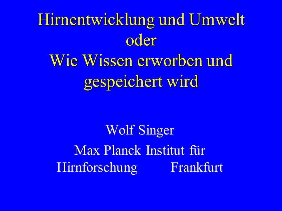 Wolf Singer Max Planck Institut für Hirnforschung Frankfurt Hirnentwicklung und Umwelt oder Wie Wissen erworben und gespeichert wird