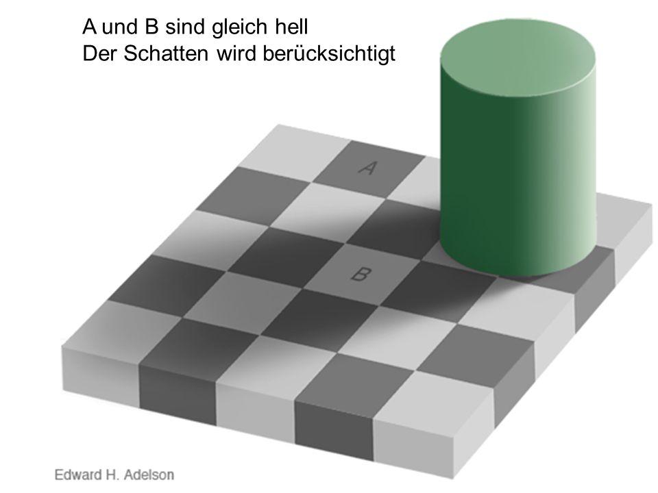 A und B sind gleich hell Der Schatten wird berücksichtigt