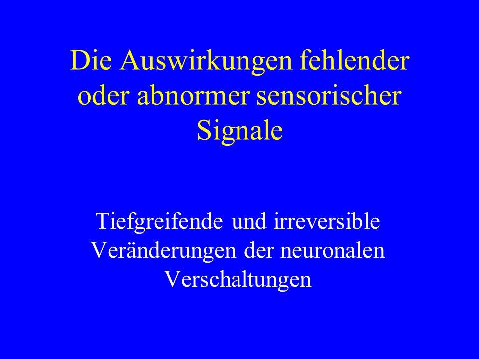 Die Auswirkungen fehlender oder abnormer sensorischer Signale Tiefgreifende und irreversible Veränderungen der neuronalen Verschaltungen
